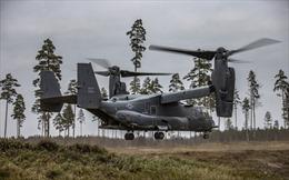 Mỹ và Estonia tập trận chung