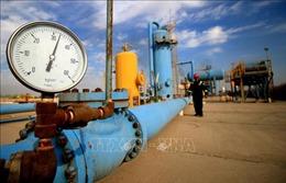 OPEC+ nhất trí tăng sản lượng dầu thêm 500.000 thùng/ngày