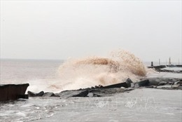 Chủ động ứng phó với gió mùa Đông Bắc và gió mạnh, sóng lớn trên biển