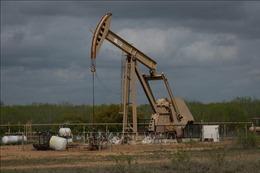 Giá dầu Brent vượt mốc 50 USD/thùng trong phiên 14/12