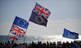 Mỹ sẵn sàng cho mối quan hệ hậu Brexit mạnh hơn với Anh và EU