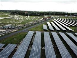 Phát triển năng lượng tái tạo tại ĐBSCL - Bài 2: Nông - điện kết hợp để phát triển bền vững