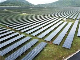 Phát triển năng lượng tái tạo tại ĐBSCL - Bài cuối: Nhân rộng các dự án xanh