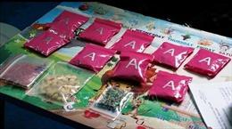 Phá thành công chuyên án, thu giữ hơn 2.400 viên ma túy tổng hợp