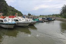Nếu an toàn về dịch, có thể mở lại các tuyến vận tải thủy đi các tuyến đảo trong tỉnh Quảng Ninh