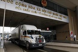 Hơn 14.000 tấn thanh long được xuất qua cửa khẩu Lào Cai dịp Tết