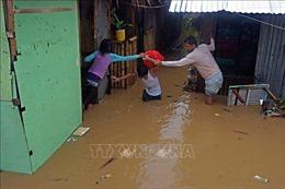 Trên 5.000 người Philippines phải sơ tán do bão Dujuan