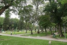 TP Hồ Chí Minh tăng thêm công viên, cải thiện mảng xanh đô thị