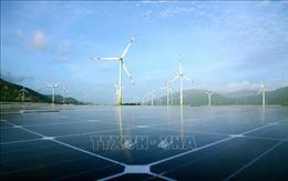 Quy hoạch điện VIII: Ưu tiên khai thác hợp lý các nguồn năng lượng tái tạo