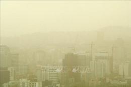 Bão cát từ Trung Quốc bao trùm toàn bộ đất nước Hàn Quốc