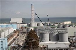 Tiếp tục tạm ngừng hoạt động nhà máy điện hạt nhân Tokai số 2