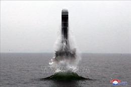 Các vật thể bay của Triều Tiên có thể không rơi vào lãnh hải của Nhật Bản