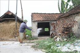 Ninh Bình ngăn chặn nguy cơ lây bệnh viêm da nổi cục trên đàn trâu, bò