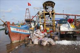Gỡ khó dự án nâng cấp mở rộng cảng cá Gành Hào