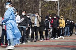 Cộng đồng Phật giáo ở Hàn Quốc không tổ chức rước đèn lồng do dịch COVID-19