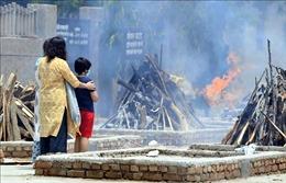 EC kêu gọi tạm thời hạn chế đi lại từ Ấn Độ