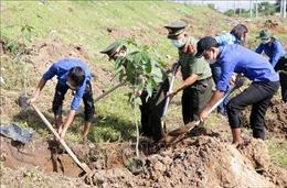Cần Thơ: Phát động 'Tết trồng cây đời đời nhớ ơn Bác Hồ'