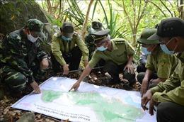 Tăng cường phòng chống cháy rừng trong mùa nắng nóng gay gắt