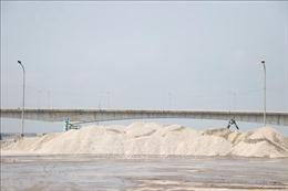 Phản hồi thông tin của TTXVN: Doanh nghiệp cam kết chấm dứt tiếp nhận mặt hàng gây ô nhiễm môi trường