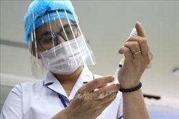 Tập huấn tại 700 điểm cầu về tiêm chủng vaccine phòng COVID-19