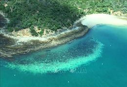 Australia phản đối UNESCO đưa rạn san hộ Great Barrier vào danh sách 'gặp nguy hiểm'