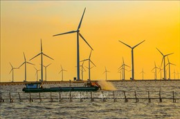 Giao quyền sử dụng khu vực biển - Bài1: Nhu cầu lớn, tiềm năng cao