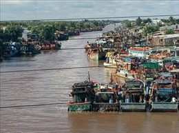 Khắc phục 'thẻ vàng'IUU: Bạc Liêu phát triển mạnh đội tàu đánh bắt xa bờ