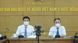 Tọa đàm trực tuyến 'Chuyên gia kiều bào chung tay vượt đại dịch - Vaccine made in Vietnam'