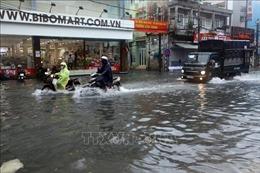 Đà Nẵng cơ bản thực hiện tốt kế hoạch ứng phó với bão số 5