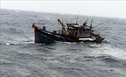 Tàu cá của ngư dân Cà Mau liên tục gặp nạn vì mưa to, gió lớn