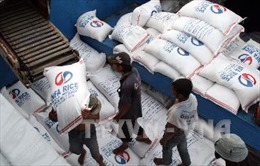 Giá gạo nếp vùng ĐBSCL lại sụt giảm do Trung Quốc thay đổi chính sách thuế
