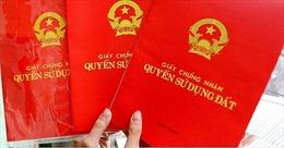 Vẫn chưa tìm thấy 1.029 phôi giấy chứng nhận quyền sử dụng đất ở Kiên Giang