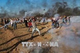 Quân đội Israel lại nổ súng vào người biểu tình Palestine