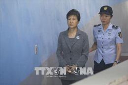 Tòa tăng án phạt tù đối với cựu Tổng thống Hàn Quốc Pak Geun-hye