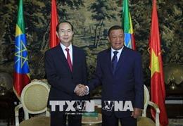 Đưa quan hệ hợp tác Việt Nam - Ethiopia sang giai đoạn phát triển mới, thực chất, hiệu quả