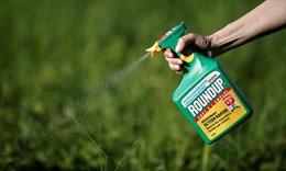 Vụ hóa chất Monsanto: Tạo cơ sở đấu tranh đòi công lý cho nạn nhân da cam Việt Nam