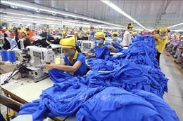 Việt Nam là một trong những nền kinh tế mới nổi tiêu biểu