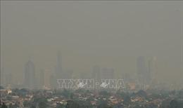 Thuế khí thải - công cụ hữu hiệu làm chậm lại tình trạng trái đất ấm lên