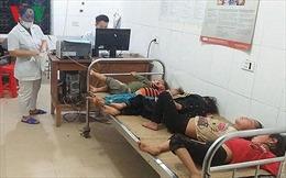 7 người bị ong đốt phải nhập viện, 4 cháu nhỏ hôn mê