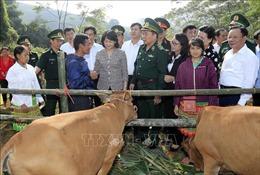 Quyền Chủ tịch nước Đặng Thị Ngọc Thịnh trao bò giống cho hộ nghèo Sơn La