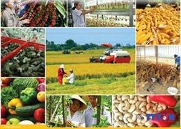 Tăng trưởng nông, lâm, thủy sản tăng cao nhất 7 năm