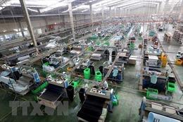 Ba nhân tố then chốt dẫn đến thành công trong thu hút FDI của Việt Nam