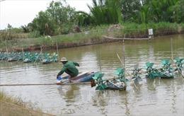 Tiền Giang: Biến Gò Công thành vùng trọng điểm xuất khẩu thủy sản