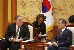 Ông Kim Jong-un sẽ sớm thăm Nga, Chủ tịch Trung Quốc cũng có kế hoạch tới Triều Tiên