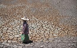 Cảnh báo về tình trạng khô hạn ở Thái Lan
