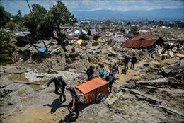 Indonesia sẽ xây dựng thành phố mới thay thế Palu sau thảm họa động đất, sóng thần