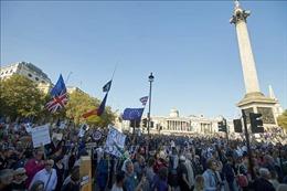 Thăm dò quy mô lớn trên Internet, 54% người Anh ủng hộ ở lại EU