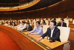 Phê chuẩn Hiệp định CPTPP - Bài 1: Lợi ích và lợi thế cho Việt Nam