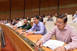 Quốc hội phê chuẩn Hiệp định CPTPP: Giúp Việt Nam nâng cao nội lực