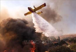 Hàng nghìn lính cứu hoả dập 'giặc lửa' cháy rừng tại California